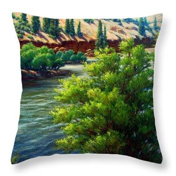 Rio Grande Colorado Throw Pillow by Vickie Fears