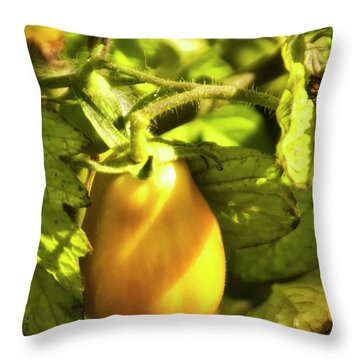 Throw Pillow featuring the photograph Ripening Roma by Albert Seger