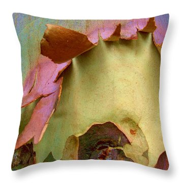 Ripped Apart Throw Pillow by Robert Margetts