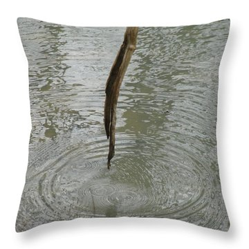 Throw Pillow featuring the photograph Ripples by Tiffany Erdman