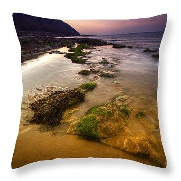 Rising Tides Throw Pillow by Yhun Suarez