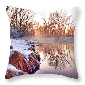 Throw Pillow featuring the photograph River Grasses Colorado by William Fields