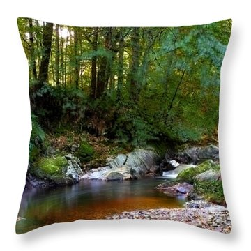 River In Cawdor Big Wood Throw Pillow