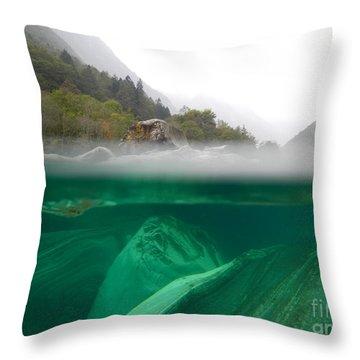 River Throw Pillow by Mats Silvan