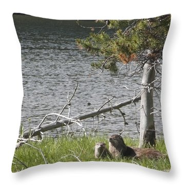 River Otter Throw Pillow by Belinda Greb