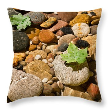 River Stones Throw Pillow by Steve Gadomski