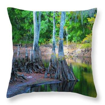 Riverside Throw Pillow by Bill Barber