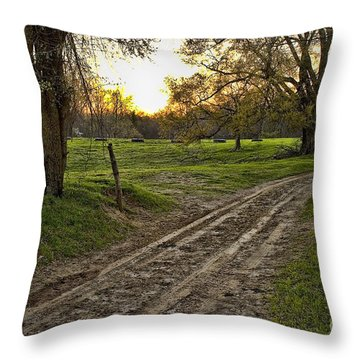 Road Less Traveled Throw Pillow by Cris Hayes