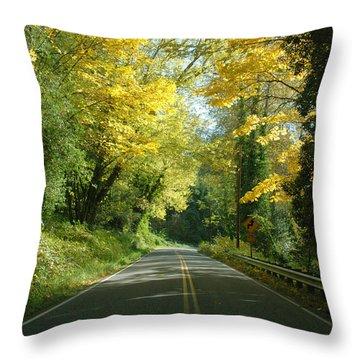 Road Through Autumn Throw Pillow