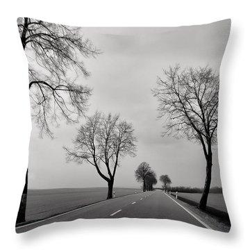Road Through Windy Fields Throw Pillow