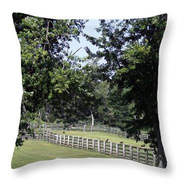Road To Lynchburg Virginia Throw Pillow by Teresa Mucha