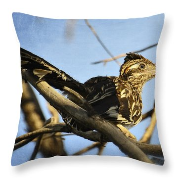 Roadrunner Up A Tree Throw Pillow