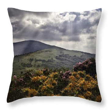 Roan Mountain Afternoon Throw Pillow by Rob Travis