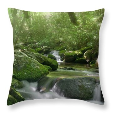 Throw Pillow featuring the photograph Roaring Fork by Cindy Haggerty