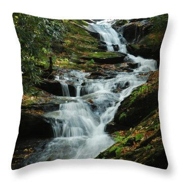 Throw Pillow featuring the photograph Roaring Fork Falls by Deborah Smith