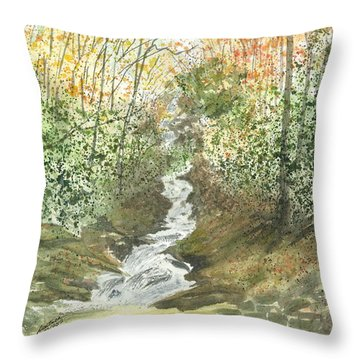 Throw Pillow featuring the painting Roaring Fork Falls  by Joel Deutsch