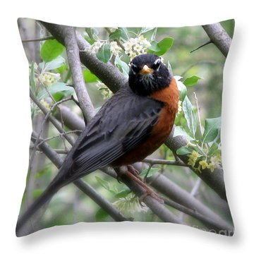 Robin In The Morning Throw Pillow