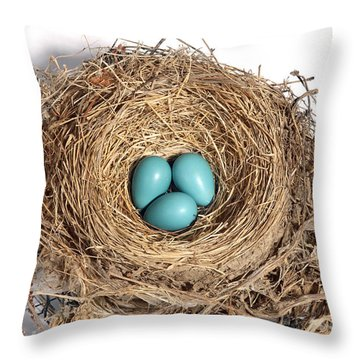 Robins Nest With Eggs Throw Pillow by Ted Kinsman