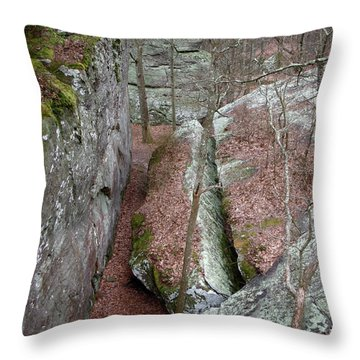 Throw Pillow featuring the photograph Rock Calving by Paul Mashburn