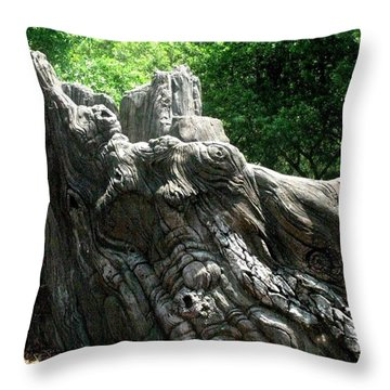 Rock Formation 2 Throw Pillow by Maria Urso