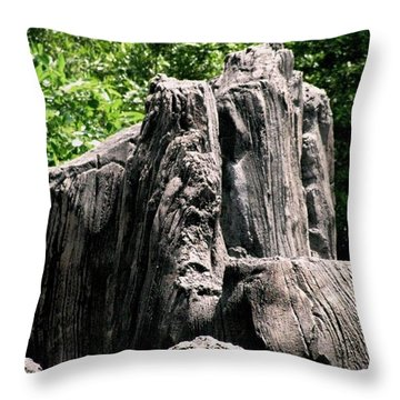 Throw Pillow featuring the photograph Rock Formation by Maria Urso