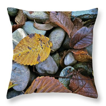 Throw Pillow featuring the photograph Rocks And Leaves by Bill Owen