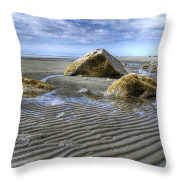 Rocks And Sand Throw Pillow by Michele Cornelius