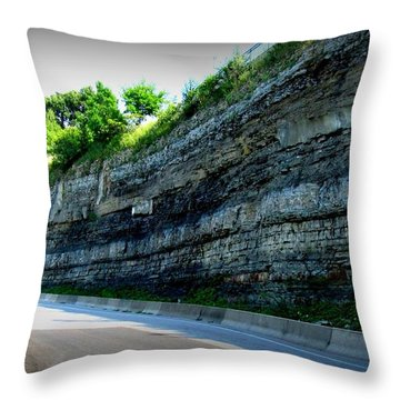 Throw Pillow featuring the photograph Rocky Jollycut by Danielle  Parent