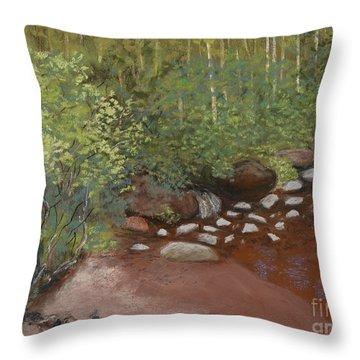 Rocky Mountain Creek Throw Pillow by Ginny Neece