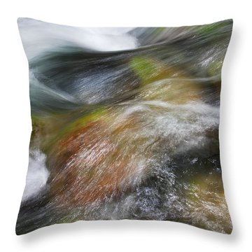 Rocky Riverbed Throw Pillow by Jenna Szerlag