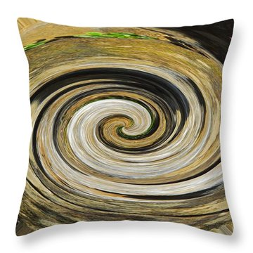 Rocky Road Throw Pillow by Cindy Manero