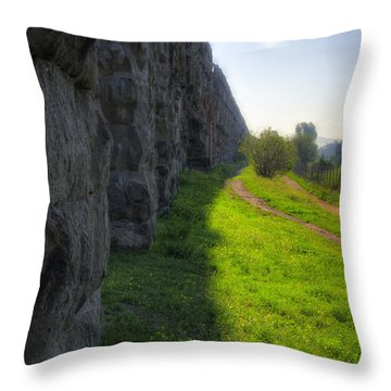 Roman Aqueducts Throw Pillow by Joan Carroll