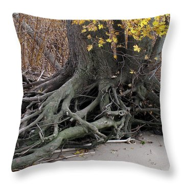 Throw Pillow featuring the photograph Roots 002 by Dorin Adrian Berbier
