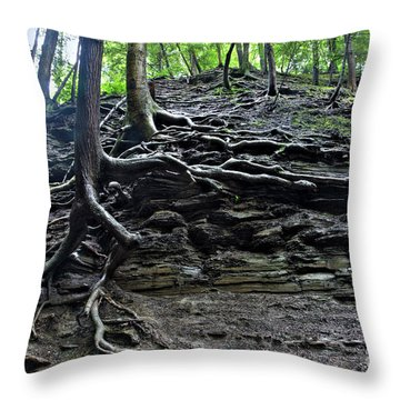 Roots In Shale Throw Pillow by Ted Kinsman