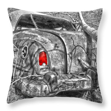 Roots Of A Journey  Throw Pillow by Jerry Cordeiro