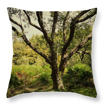 Roots Of Wisdom. Colorful Version. Wicklow Hills. Ireland  Throw Pillow by Jenny Rainbow