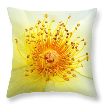 Rosa Golden Wings Throw Pillow