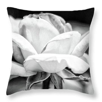 Rose 2 Throw Pillow by Rosanne Nitti