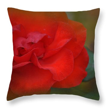 Rose Dream Throw Pillow by Mary Machare
