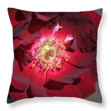 Rose Glow Throw Pillow by Shawn Naranjo