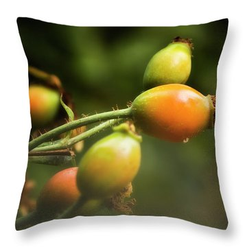 Throw Pillow featuring the photograph Rose Hips by Albert Seger