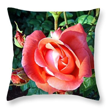 Throw Pillow featuring the photograph Rose In Setting Sun by Nick Kloepping