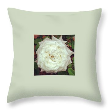Roses Throw Pillows