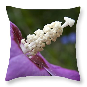 Rose Of Sharon Throw Pillow by Jeannette Hunt
