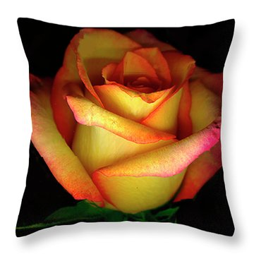 Rose Scan Day 3 No Lid Throw Pillow by Paul Shefferly