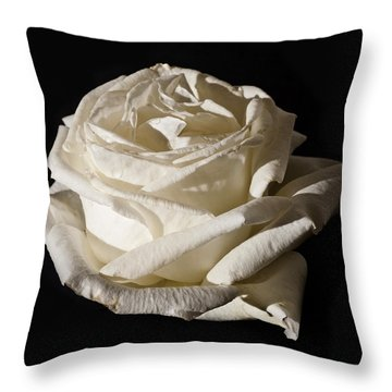Throw Pillow featuring the photograph Rose Silver Anniversary by Steve Purnell