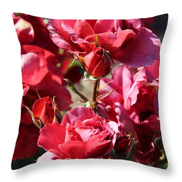 Roses Throw Pillow by Kerri Ligatich