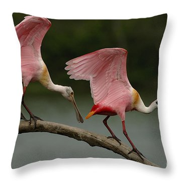 Rosiette Spoonbills Throw Pillow by Bob Christopher