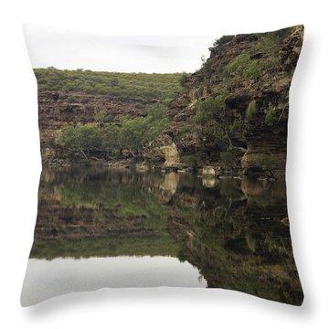 Ross Graham Gorge Throw Pillow by Robert Caddy