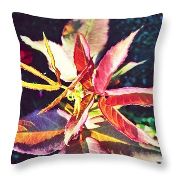 Rosy Glow - Rose Leaves Afternoon Light Throw Pillow